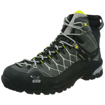 Salewa Alp Trainer Mid GTX mens