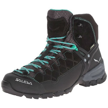 Salewa Alp Trainer Mid GTX womens