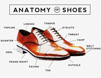 The Anatomy Of A Shoe